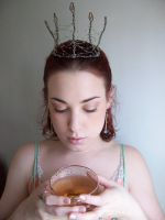 Faerie Crown VI by fetishfaerie-stock
