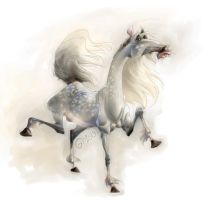 Doodle 060 - Cirrcus Horse by giovannag