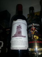 Fallout Props - Wine Tenpenny Tower by moltonel72