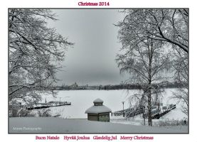 Christmas Card by Arawn-Photography