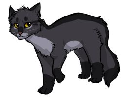 Coal by InvaderTigerstar