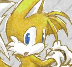 Tails by Rush88