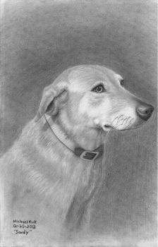 Sandy, the dog by MechanicalGraphite