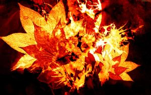 Burning Leaves by StarwaltDesign