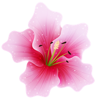 Pink Flower PNG by HanaBell1
