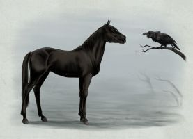 The horse and the crow by Adlynh