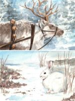 Reindeer and Snowshoe Hare by Pannya