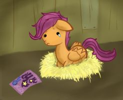 scootalool by Kna