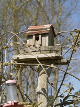 old birdhouse by Irie-Stock