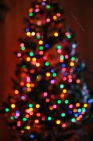 Christmas tree bokeh by fotografka