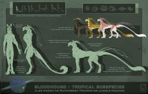 Bloodhound Subspecies - Tropical 2.0 by BloodhoundOmega