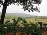 Framed Tuscany by ShipperTrish