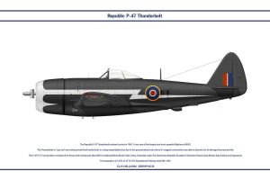 P-47D GB 73 OTU by WS-Clave