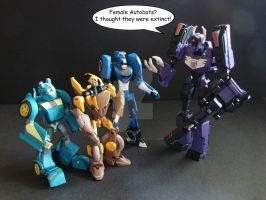 TFA: Female Autobots? by Gizmo-Tracer