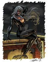 Black Cat - Al Rio by ChrisShields