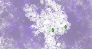 Snowdrop Abstract by mojomcm