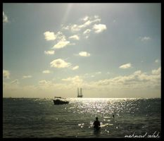 nelson Iland by AgamiDesigner