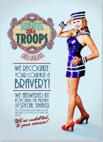 Salute the Troops 2 by reallyrandy