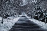 Road by CekicPhotography
