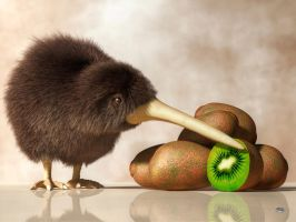 Kiwi Bird and Kiwifruit by deskridge