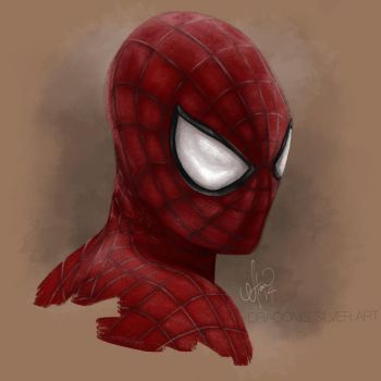 The Amazing Spider-Man by Draconis-Silver