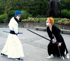 Grimmjow Vs Ichigo by Satsuma-Lights