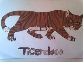 Tigerclaw by noonfeather