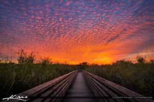 Sunset Juno Dunes Nartural Area at Boardwalk by CaptainKimo