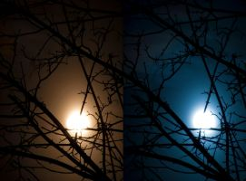 The two sides of the moon by StefanJanisch