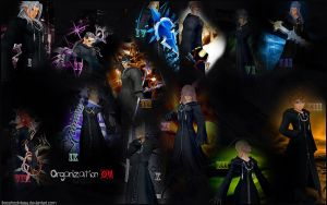 Organization XIII Collab by FreeshootXiggy