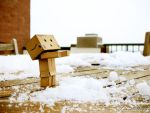 Day 007: Danbo's Waiting by twong314