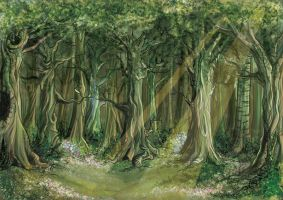Deep forest daylight by mayu