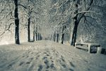 Snowy path by PishkoLensi