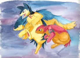 Team Typhlosion by Renegar-Kitsune