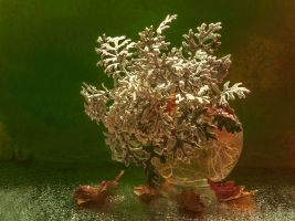 autumn still life by mariall