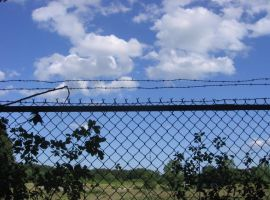 Barbed Wire II by SSHarlequin