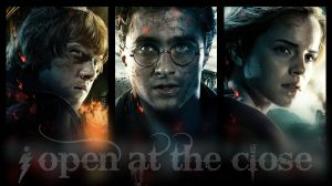 Harry Potter 7 pII wallpaper by alienforce1004