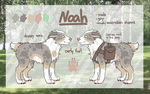 Noah | Reference sheet [2016 - current] by Caryos