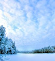 winter day by KariLiimatainen