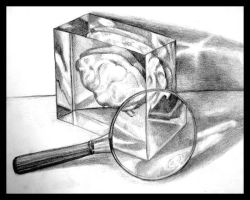 A Brain in a Box by Duckweed