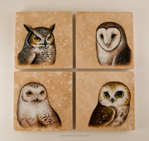 Owl Coasters (SOLD) by TumblingTortoises
