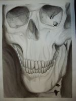 Skeleton abstration 0 by beckuh