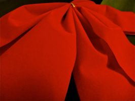 Red Bow by xDNarnian
