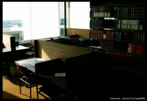 University - Library II by angelwillz