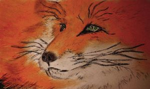 Oil pastel sketch # 34: Fox Close-Up by CpointSpoint