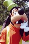 Goofy Magic kKingdom Pared 200 by MightyMorphinPower4