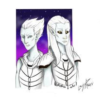 Brothers of snow by LedyRaven