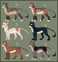 Lion cub adopts [open] by Rizuuki