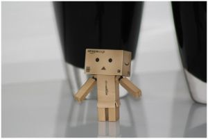 Danbo unwilling by frestro79