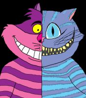 Then and Now: Cheshire Cat by SalmirAeon